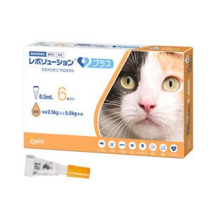 猫のマダニ予防について